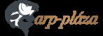 Carp Academy Bojlis Merítő Fej 100×100cm Zöld